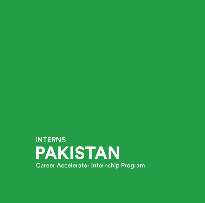 Reviewing the First Interns Program